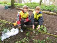 Cub Scouts helping with snowdrop planting