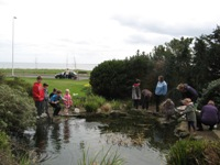 Activities with Countryside Rangers
